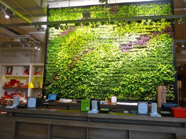 tường cây giả nhà hàng