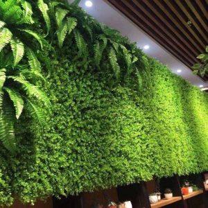 tường cây hoa decor quán cà phê